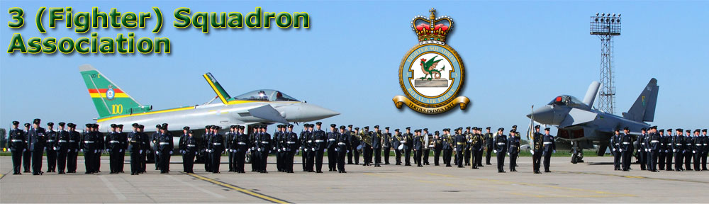 http://www.3fsquadronassociation.com/wp-content/uploads/2012/03/main-header-image1.jpg